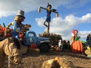 Spooky Characters Haunt Pumpkinland